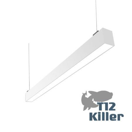 Toros Killer
